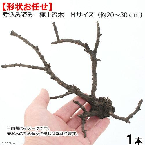 形状お任せ 煮込み済み 極上流木 Mサイズ(約20〜30cm)1本 お一人様8点限り 関東当日便