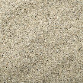 未洗浄 サンゴ砂 パウダー(#0) 1L 海水水槽用底砂 関東当日便