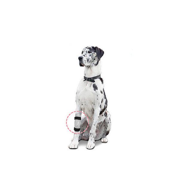 ファンタジーワールド IVカテーテルガード XLサイズ 大型・超大型犬用 介護 看護 関東当日便