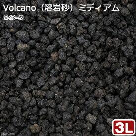 No.116 Volcano(溶岩砂)ミディアム 3リットル(30cm水槽用) お一人様6点限り 関東当日便