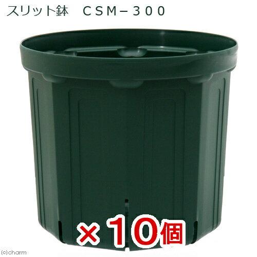 スリット鉢 CSM−300 10個入り ガーデニング 鉢 お一人様1点限り 関東当日便