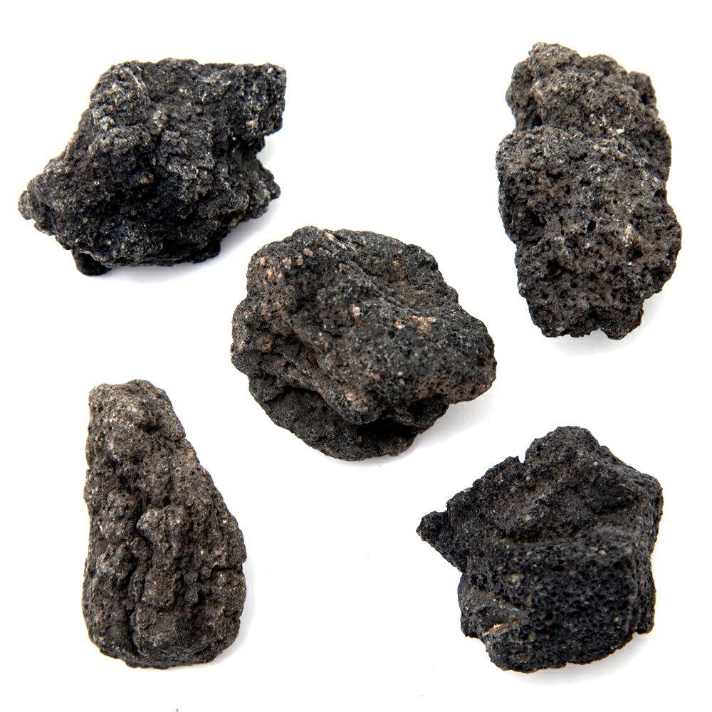 形状お任せ レイアウト用溶岩石 Sサイズ 10個セット(5個×2) 関東当日便