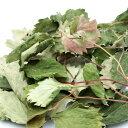 国産 いちごの葉 10g 小動物のおやつ うさぎ ハムスター 無添加 無着色 関東当日便