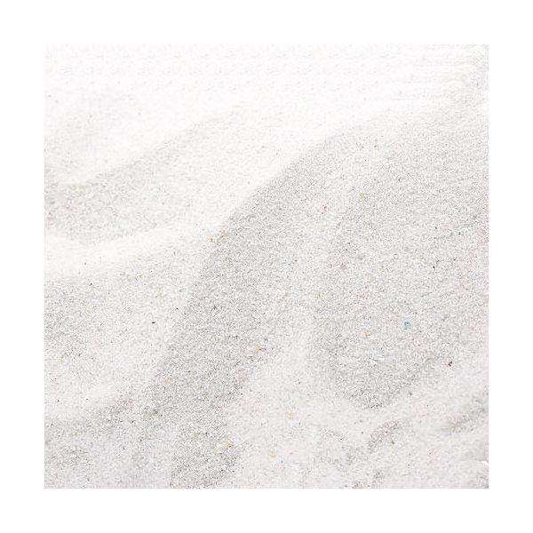 アマゾン川源流の白砂 10kg(5kg×2袋) (約6L) 微粒 底砂 底床 コリドラス エイ お一人様2点限り 関東当日便