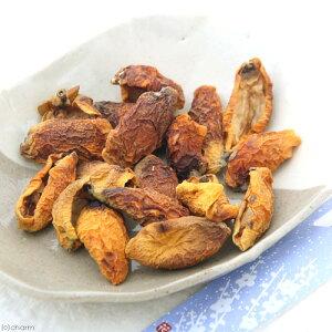 国産 びわの実 20g 小動物用のおやつ ドライフルーツ 無添加 無着色 関東当日便