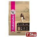 ユーカヌバ シニアラム&ライス 7.5kg シニア用 全犬種用 7歳以上 Eukanuba 関東当日便