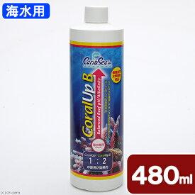 カミハタ カリブシー コーラルアップB 480ml 関東当日便