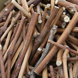 国産 ぶどうの木 未選別太さおまかせ 1kg かじり木 小動物用のおもちゃ 無添加 無着色 関東当日便