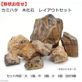 カミハタ 木化石 レイアウトセット 45〜75cm水槽向け 形状おまかせ 関東当日便