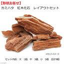カミハタ 紅木化石 レイアウトセット 形状おまかせ 関東当日便