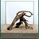 一点物 極上流木セット 30cm水槽用 218297 関東当日便