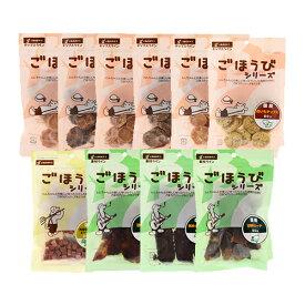 わんわんごほうび 人気商品 盛りだくさんセット 10種×1袋 計10袋 関東当日便