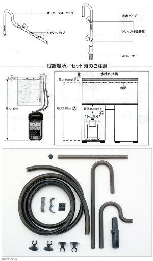 60Hzエーハイムプロフェッショナル4+227360Hz(西日本用)【HLS_DU】関東当日便