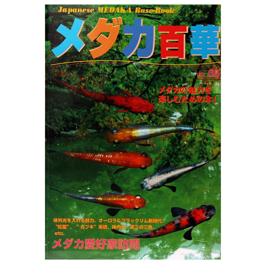 メダカ百華 Vol.6 関東当日便