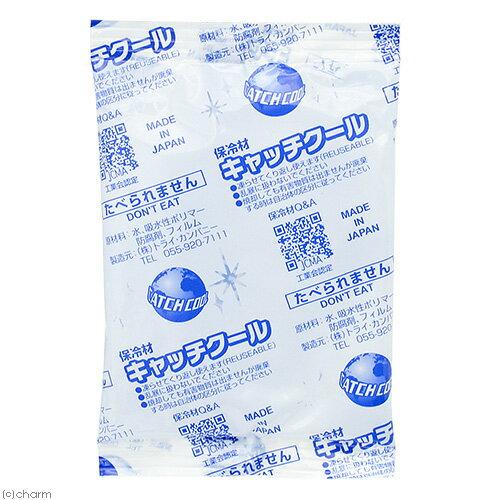 キャッチクール(保冷剤) CH−100PL 2袋入り 関東当日便