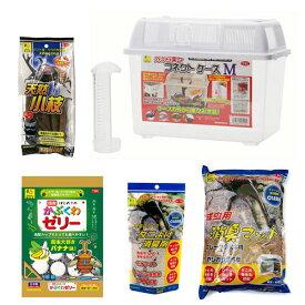 三晃商会 SANKO お母さん楽々 昆虫飼育セットM 関東当日便