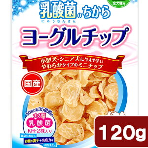 ペティオ乳酸菌のちからヨーグルチップ120g【HLS_DU】関東当日便