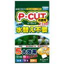 コトブキ工芸 kotobuki P・カット ネット60 お徳用 関東当日便