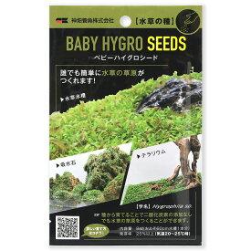 カミハタ 水草の種 ベビーハイグロシード 関東当日便