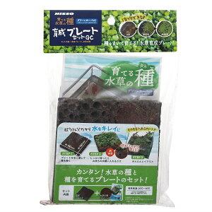 ニッソー 育てる水草の種 育成プレートセットGC 関東当日便