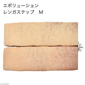 エボリューション レンガステップ M 関東当日便