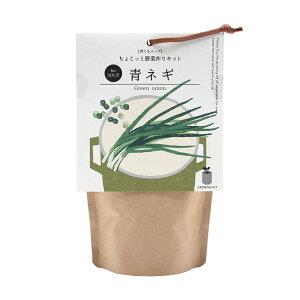 聖新陶芸 育てるスープ 青ネギ ペーパーバック 関東当日便