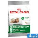 ロイヤルカナン SHN ミニ エクシジェント 成犬・高齢犬用 4kg 2個 正規品 3182550795203 ジップ付 関東当日便