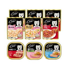 マース シーザー 成犬用 人気の味食べ比べセット トレイ3種各1個 + パウチ3種各2袋 関東当日便
