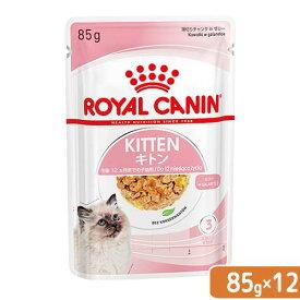 ロイヤルカナン 猫 キトン ゼリー 成長後期の子猫用 85g 1ボール12袋 9003579311714 関東当日便