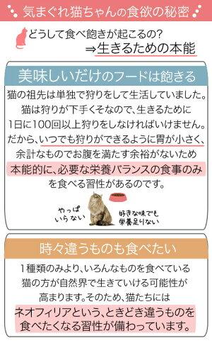 近日販売開始ロイヤルカナンFHN−WET成長後期の子猫用食べ比べセット3種各2袋計6袋【HLS_DU】関東当日便