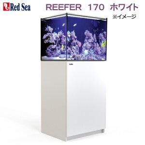 □(超大型) レッドシー REEFER 170 ホワイト オーバーフロー水槽 3個口 本州四国送料無料・同梱不可・代引不可 才数600