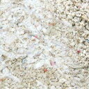 (海水魚)ばくとサンド(立上げ簡単サンド)ミディアム 9リットル バクテリア付き ライブサンド