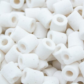 新グラスリング 高品質ろ過材 Sサイズ 10Kg(5Kg×2袋)(約20L) リング状ろ材 バクテリア 沖縄別途送料 関東当日便