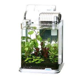 (水草)テトラ RG−20LE おまかせ水草レイアウト水槽セット 本州四国限定