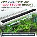アクロ OVALブラック LED 1200 6500lm BRIGHT Aqullo Series 120cm水槽用照明 関東当日便