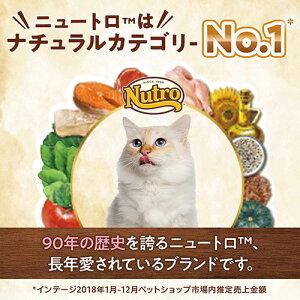 ナチュラルチョイス室内猫用アダルトチキン500g【HLS_DU】