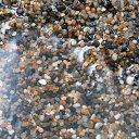 無地パッケージ Spring Water(湧水の砂)ミディアム 7リットル(60cm水槽用) 関東当日便