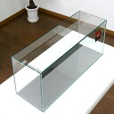 GEX グラステリア スリム600 (60×20×25)60cm水槽(単体) ジェックス お一人様1点限り 関東当日便