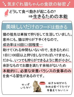 【ボール売り】ロイヤルカナン(猫用)FHN−WETインスティンクティブ1〜10歳健康的な成猫用85gお買得12袋【関東当日便】