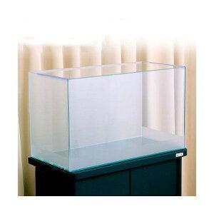 バックスクリーン貼付済 サンド オールガラス60cm水槽 アクロ60N 前側面5cm帯タイプ(単体) お一人様1点限り 沖縄別途送料 関東当日便