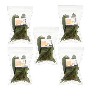 5袋セット 国産 びわの葉 10g×5袋 小動物用のおやつ 国産 無添加 無着色 関東当日便