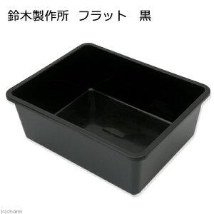 プラ舟フラット黒ビオトープめだか【HLS_DU】関東当日便