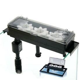 センチ 水槽 40