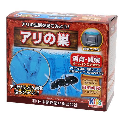 日本動物薬品 ニチドウ アリ飼育観察セット アリの巣 関東当日便