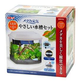GEX メダカ元気 LED+フィルター付 やさしい水槽セット 関東当日便