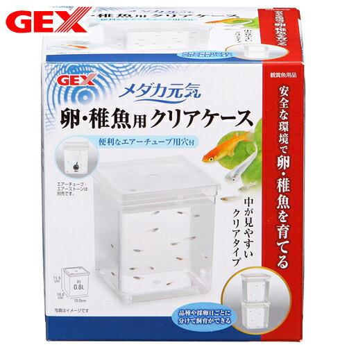 GEX メダカ元気 卵・稚魚用クリアケース 関東当日便