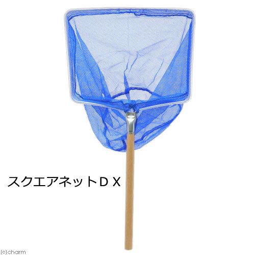 スクエアネットDX 関東当日便