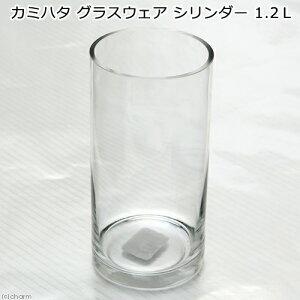 アウトレット品 カミハタ グラスウェア シリンダー 1.2L 訳あり 関東当日便