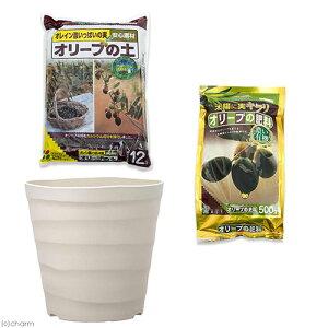 花ごころ オリーブの土+オリーブの肥料+アップルウェアー クラフトポット 30型 ホワイト セット お一人様5点限り 関東当日便