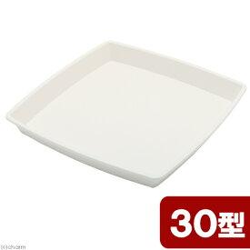 アップルウェアー クラフトスクエアプレート 30型 ホワイト 関東当日便